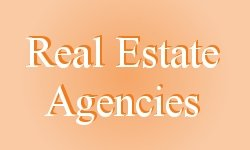 Real_estate_agent